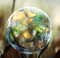 Environmental & Social Responsibility for Businesses