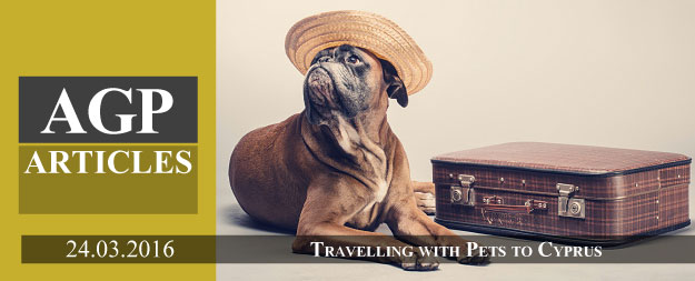 Travelling to Cyprus with Pets