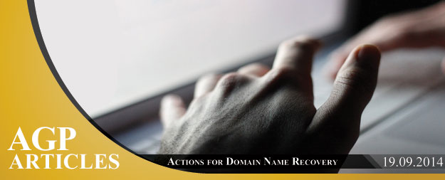 Actions for Domain Name Recovery