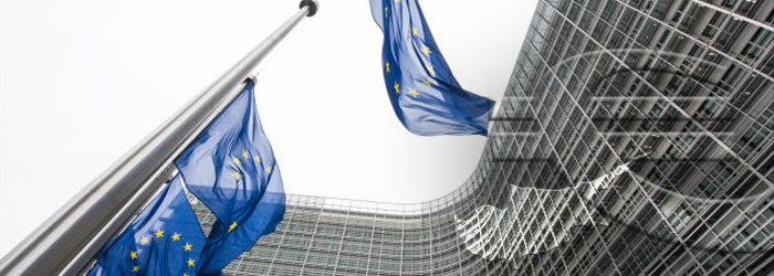 The Anti-Tax Avoidance Directive (ATAD)